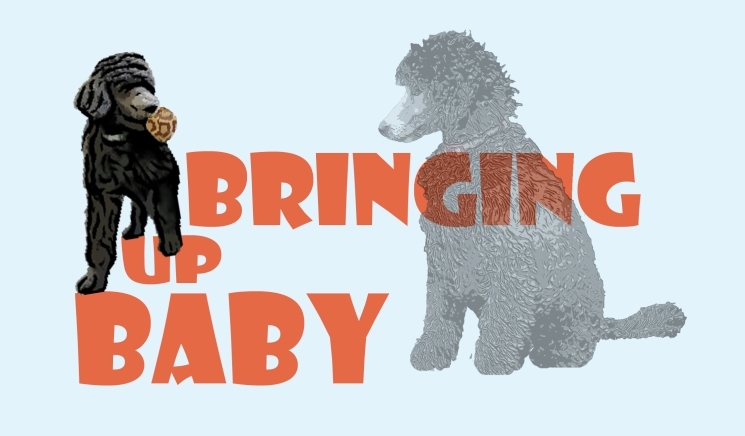 logo-bringing-up-baby